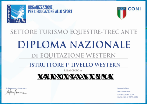 diploma-opes_page_1