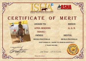 certificato-april-morning2