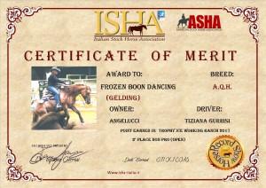 frozen-certificato