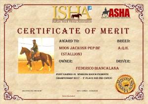 moon-certificato